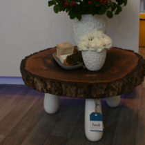 Styling Stand Cosentino Woonbeurs 2011