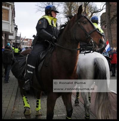 Politiepaard