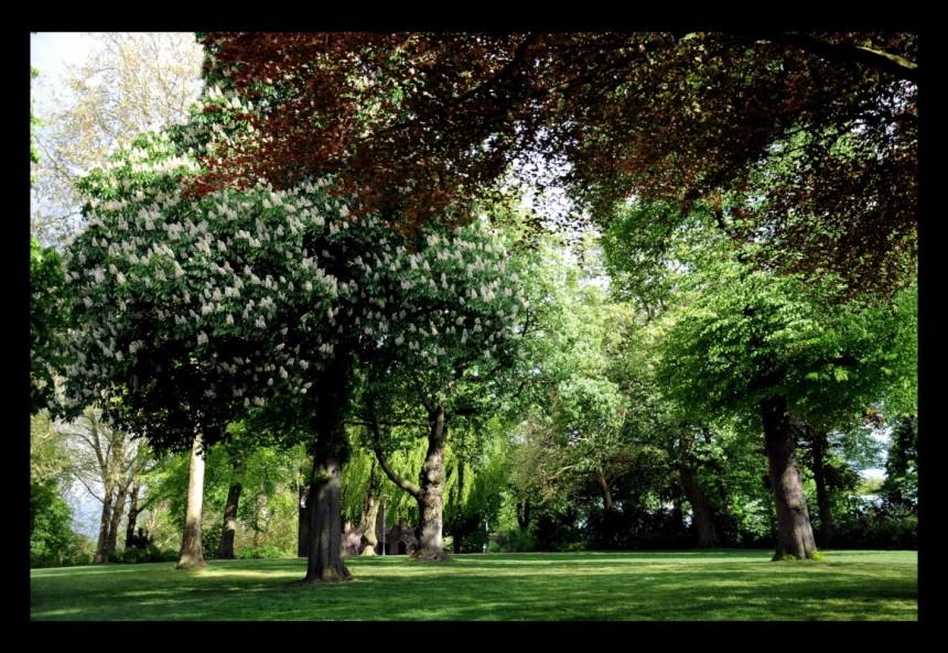 Valkhofpark Nijmegen