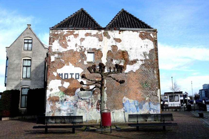 StreetLife #201 Dordrecht Ronald Puma