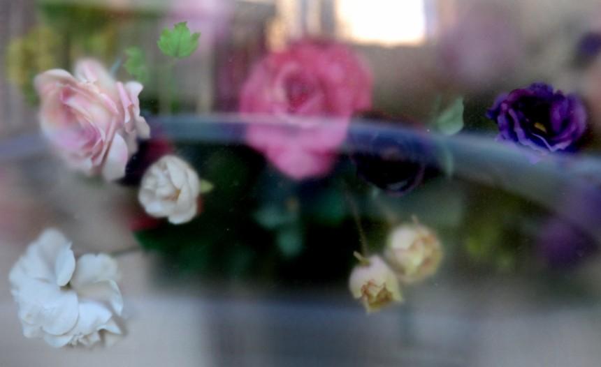Fotografie / Photography