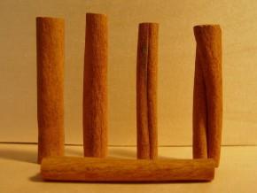 Kaneel (Cinnamomum zeylanicum) ©IEZ